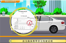 驾驶培训和考试